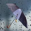 Vale Şemsiye & VİP Şemsiye